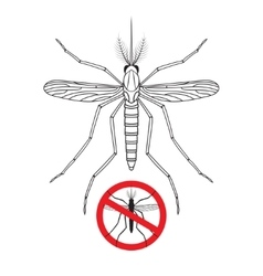 Mosquito and No mosquito sign silhouette vector image