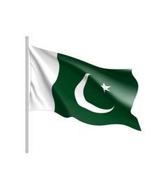 pakistan flag flat style vector image vector image
