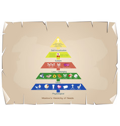 hierarchy of needs chart of human motivation vector image