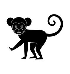 titi monkey isolated icon vector image