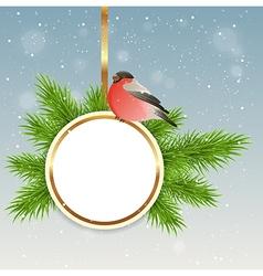 Green fir branch and bullfinch vector image vector image