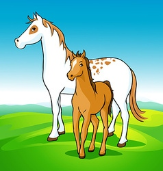Horses on meadow - mare and foal vector