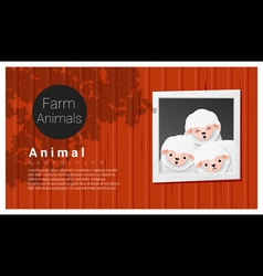 Farm animal background with sheep vector image