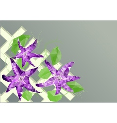 Clematis on fence vector