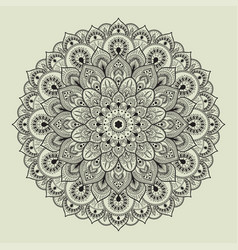 beautiful ethnic mandala with a floral pattern vector image vector image