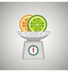 Fruit on balance isolated icon design vector