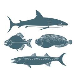 Predator fish vector
