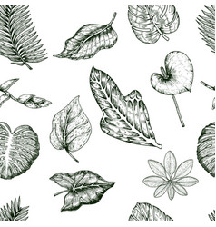 tropical plants seamless pattern vector image