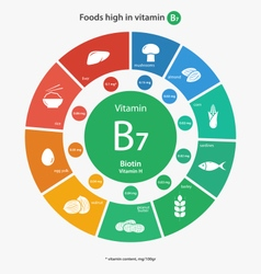 Foods high in vitamin b7 vector