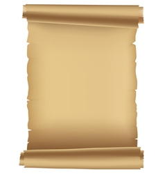 Ancient paper scroll vector