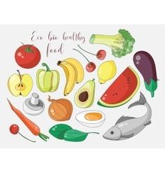 Various hand drawn eco bio healthy food vector