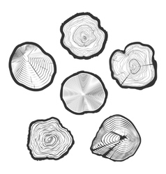 Tree-rings set vector