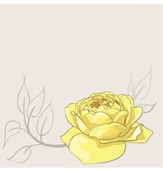 Sketch of yellow rose vector