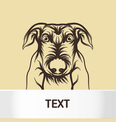 dog and card template icon design dog vector image vector image