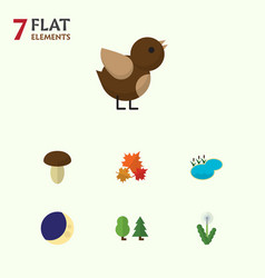 Flat icon natural set of canadian bird floral vector