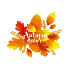 Autumn watercolor leaves vector