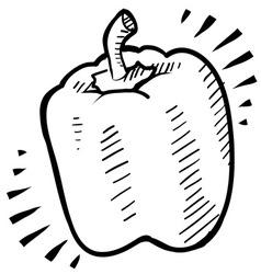 doodle bell pepper vector image