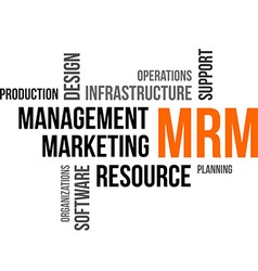 word cloud mrm vector image vector image