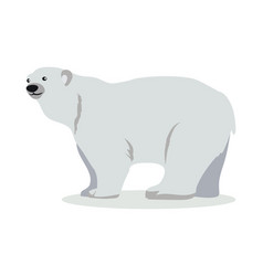Polar bear cartoon flat vector