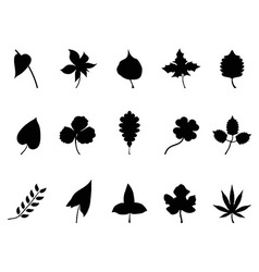 black leaves Silhouettes set vector image vector image