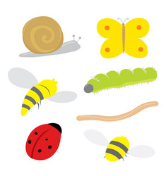 insect bug snail ladybird butterfly bee cartoon vector image