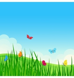 Beautiful summer meadow vector image