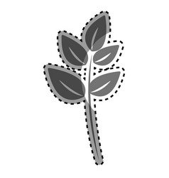 gray plant branch decoration design vector image vector image