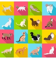 Set cats of different breeds with long shadow vector image