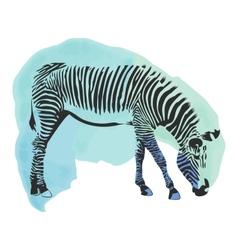 Colorful watercolor zebra cover vector