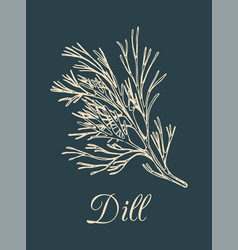 Dill on dark background hand vector