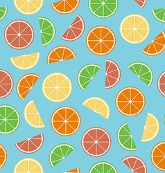 Colorful citrus seamless pattern vector