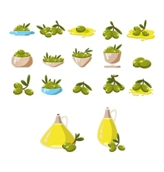 Olives icons set with tree oil branch leaf vector image