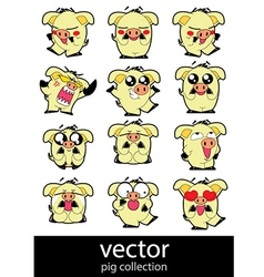Pic action set vector