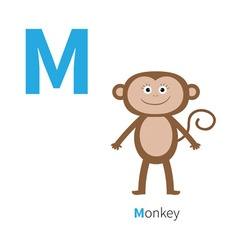 Letter m monkey zoo alphabet english abc with vector