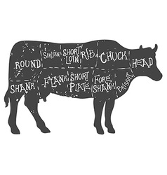 American cuts of beef vintage typographic vector image