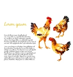 Design template with watercolor hens vector image