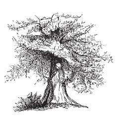 dryope vintage vector image vector image