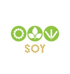 Soybean vector image vector image