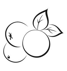 Apples with leaves black pictogram vector