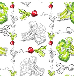 radishes and broccoli vector image