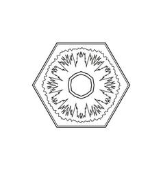 outline hexagon snowflake circular ornament vector image