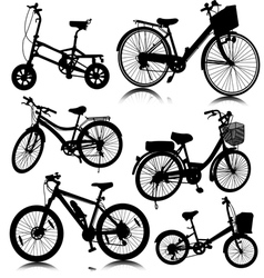bicycle bike vector image