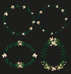 floral border set vector image vector image
