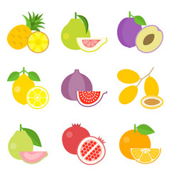 Fruit icons set 1 vector