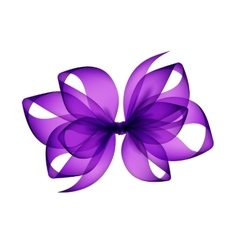 Purple Violet Bow Close up on Background vector image