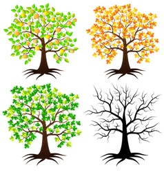 Trees in different versions vector