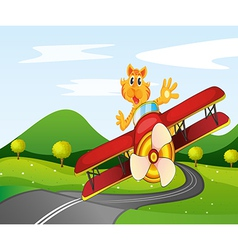 A tiger riding in a plane vector image vector image