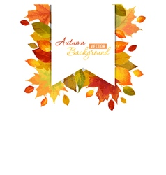 Colorful autumn leaves background vector