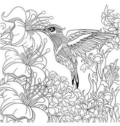 Zentangle stylized cartoon hummingbird vector