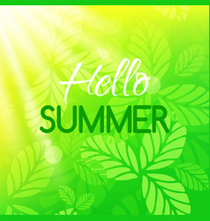 Hello summer card banner with typographic design vector